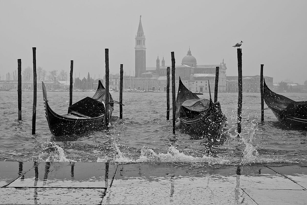 Three gondolas bouncing in the waves at St. Mark's square on a winter day.