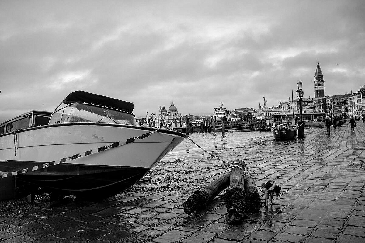 High tide - Venice under water - taxi on land