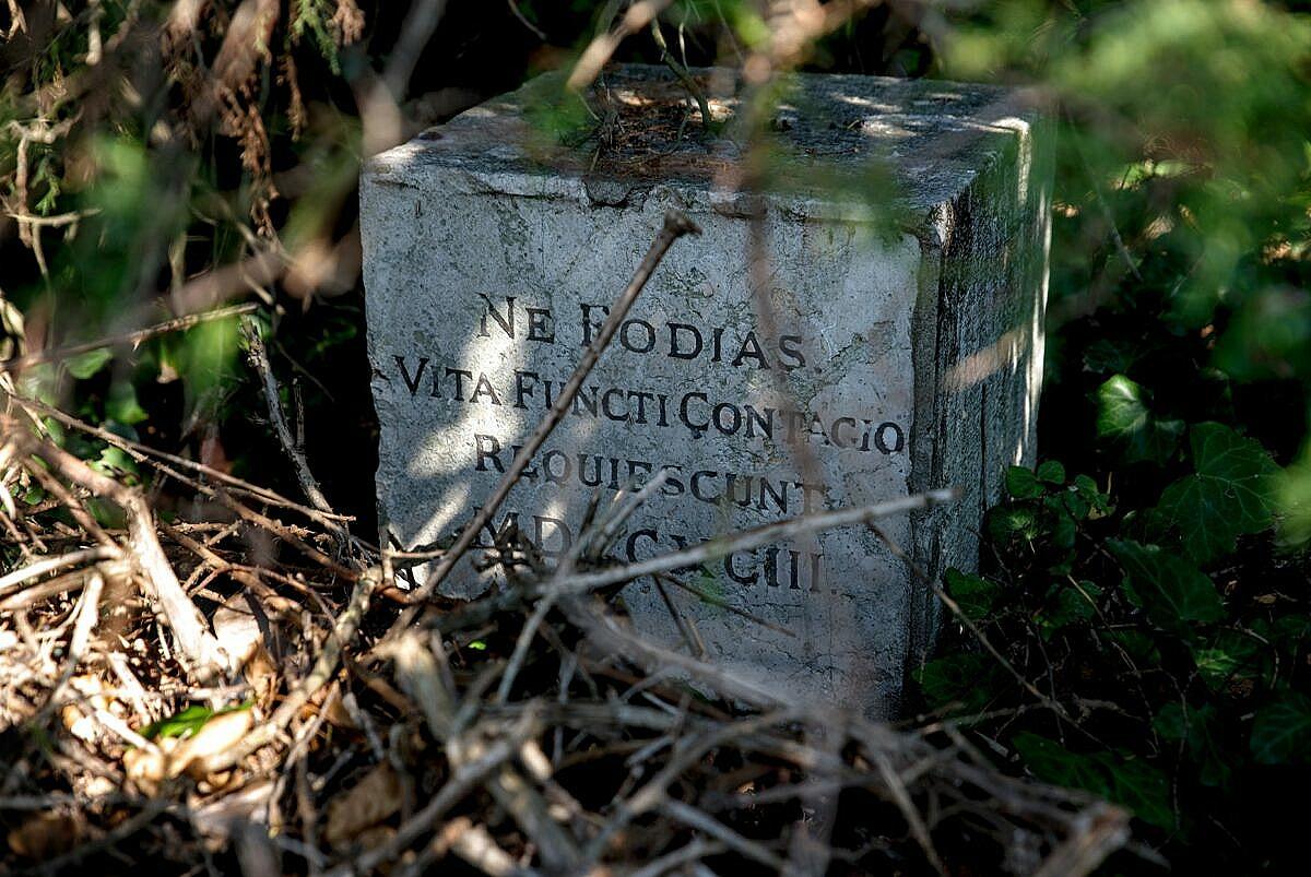 The famous plague stone at Poveglia