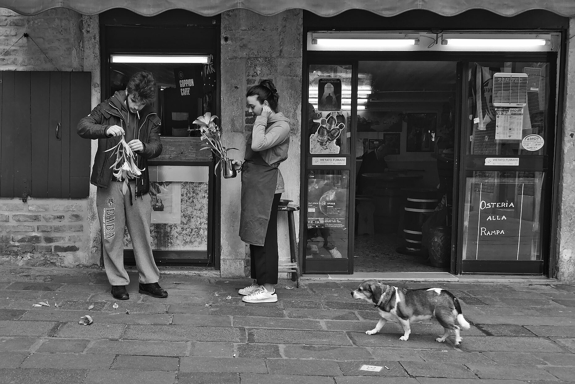Young couple sorting out the flowers of a bar in Venice